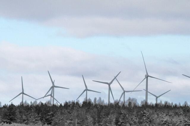Kliimamuutused tuulikud